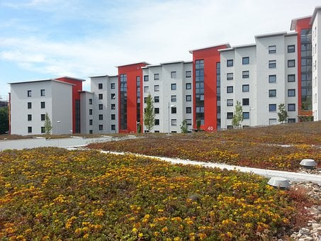 Rehabilitation, New Building, Green Roof, Red, White