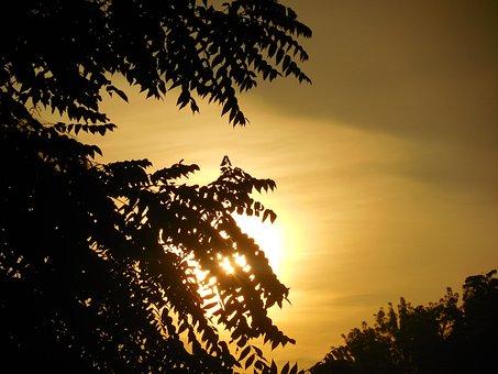 Sunrise, Golden, Sky, Nature, Sun, Sunlight, Outdoor
