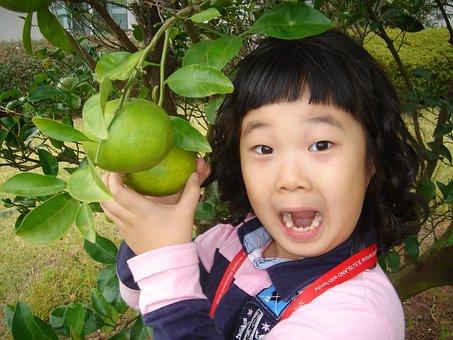 Look At The Simple, Surprise, Citrus, Orange Girl