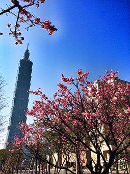 Taiwan, Taipei, Architecture, 101, Spring, Travel