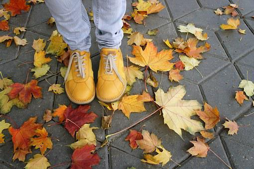 Shoes, Yellow, Autumn, Leaves, Street, Pavement