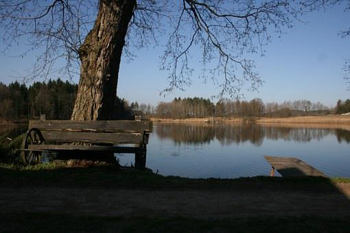 Pond, Bench, Nature, Autumn, Nooks And Crannies