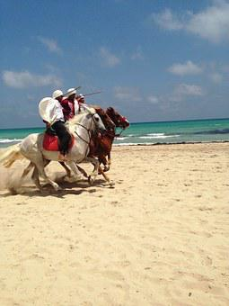 Tunisia, Djerba, Horses, Riding, Sandy, Beach, Summer