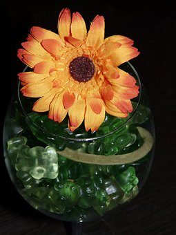 Glass, Candy, Sweetness, Colorful, Gift, Wine Glass
