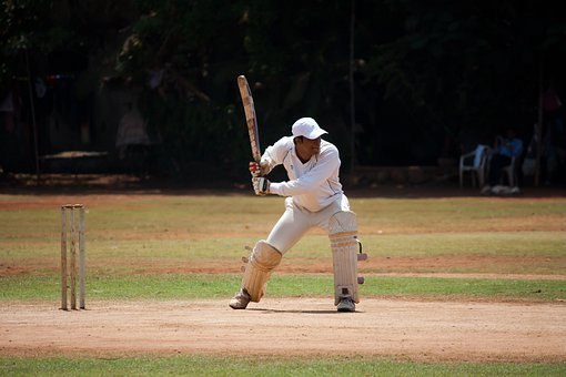 Cricket, Batsman, Sports, Stumps, Hitting, Ground