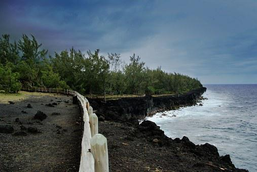 Reunion Island, Lava, Sea, Sky, Tree, Ocean, Blue, Side