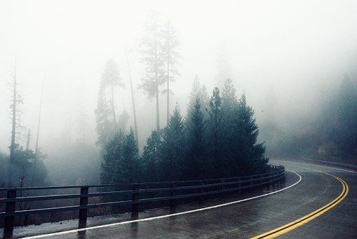 Road, Curve, Wet, Rainy, Forest, Fog, Misty, Nature