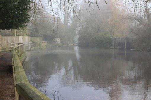 Ford, North Warnborough, Water, Reflection, Misty