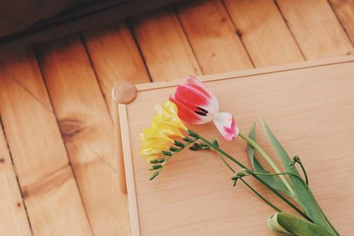 Flowers, Natural, Blossom, Bloom, Tulip, Yellow, Red