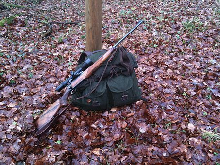 Rifle, Hunting, Hunter Backpack, Forest, Leaves, Tree