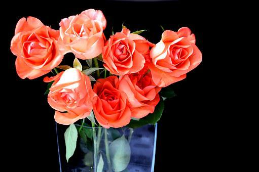 Roses, Bouquet, Flowers, Bouquet Of Flowers