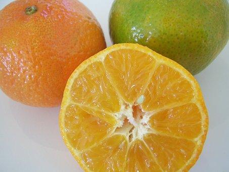 Oranges, Citrus, Fruits, Yellow, Inside, Sliced, Slices
