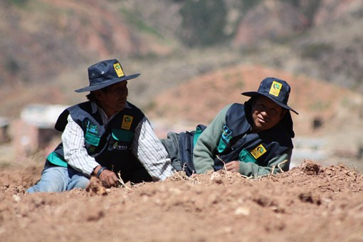 Men, Resting, Ayma, Peace, Bolivia