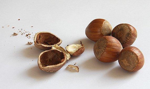 Nuts, Hazelnuts, Shell, Nuclear, Food, Eat, Nutshells