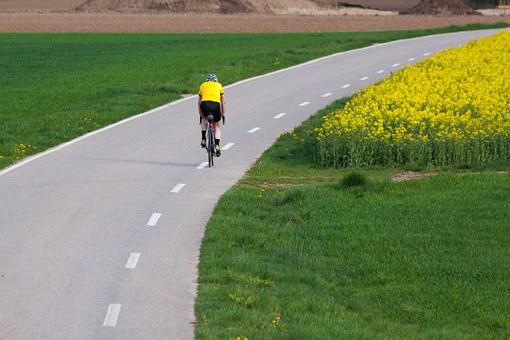 Cyclists, Road, Mark, Oilseed Rape
