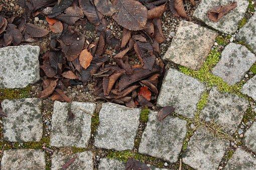 Setts, Stone, Street, Autumn, Park, Leaf, Mark