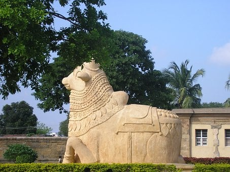 Bull, Statue, Nandi, Vehicle, Celestial, Shiva