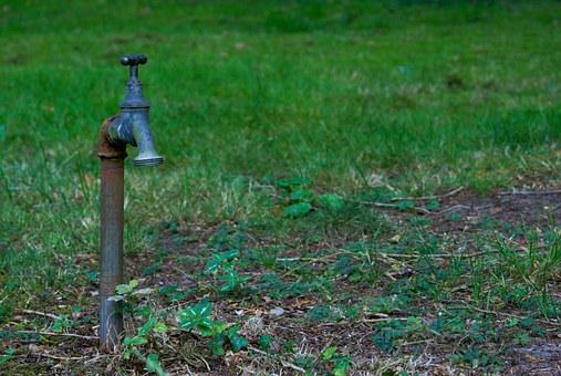 Faucet, Grass, Water, Drought, Green, Lonely, Pointless