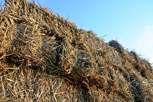 Straw, Dare, Straw Bales, Agriculture, Rural, Harvest