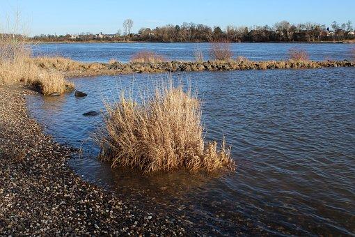 River, Landscape, Water, Bank, Nature, Groyne