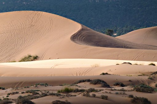 Pink Sand Dunes, Utah, Usa, Sand, Desert, Dry, Hot