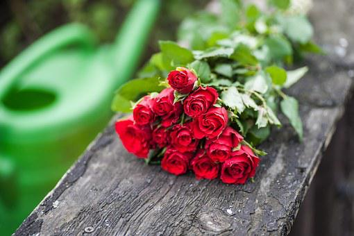 Bouquet Of Roses, Lying, Red, Wood