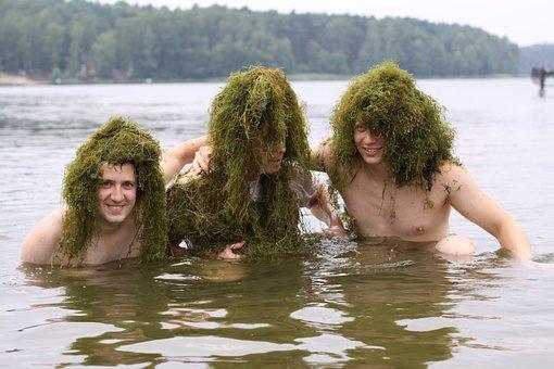 Catfishes, Algae, Beard, Funny, Fun, Grass, Weekend