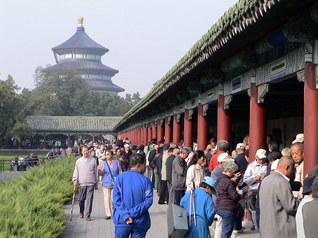 Tiantian Park, Card Game, Play, China, Human, Personal
