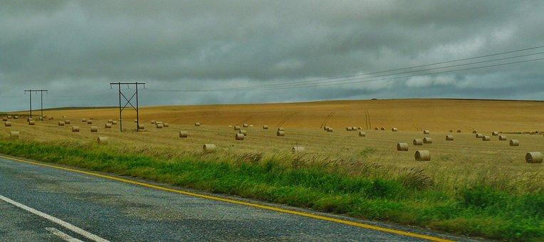 Road, Landscape, Hay Bales, Field, Nature, Wide, Meadow