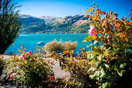 Lake Wakatipi, Queenstown, New Zealand, Beach, Outside
