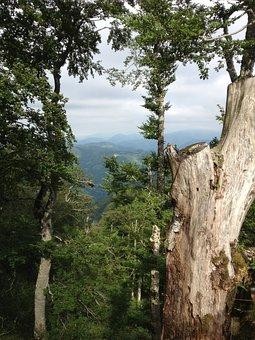 Iraty, Mountain, View, Strain, Panorama, Nature