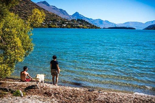 Peace Park, Lake Wapatiku, Queenstown, New Zealand, Dog