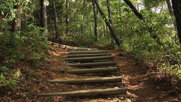 Mountain, Mountain Trail, Stairs, Abstract, Nature