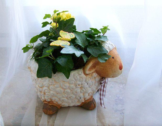 Easter, Lamb, Yellow Coral Flower, Amber