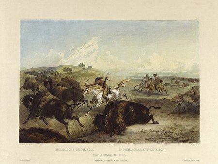 Indians, Hunts, Buffalo, Bison, Bueffeljagt, Bisonjagt
