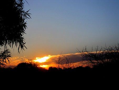 Sunset, Bright, Orange, White, Light, Yellow, Purpel