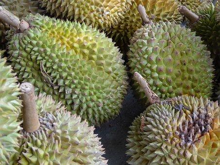 Durian, Java, Indonesia, Fruit, Food, Asia