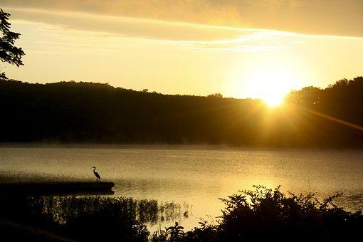Lake, Sunrise, Water, Landscape, Summer, Peaceful, Dawn