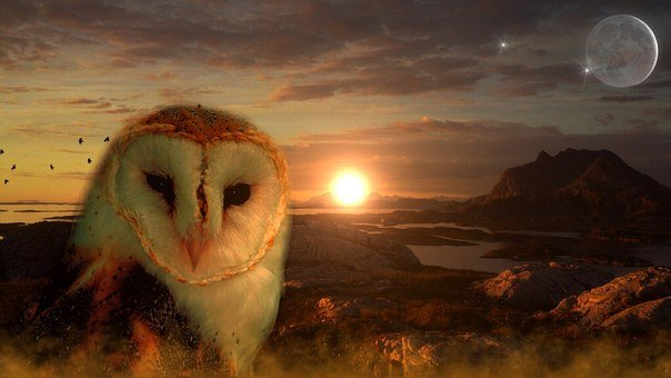 Owl, Sun, Moon, Star, Mountains, Lakes, Birds