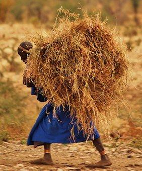 Massai, People, Tanzania, Boma, Africa, Massai Land