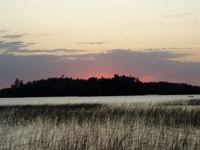 Sunset, Lake, Summer, Nature, Reeds, Minnesota, Scenery
