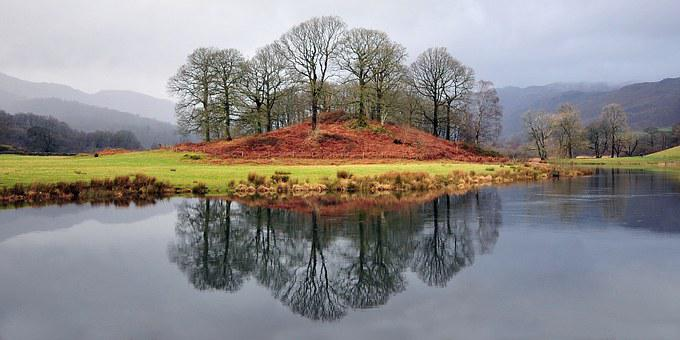 Trees, Lake, Cumbria, Water, Nature, Landscape