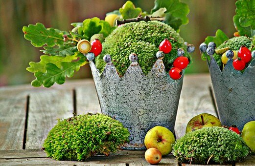 Autumn, Autumn Decoration, Decoration, Fruits