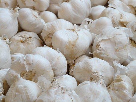 Garlic, Allium Sativum, White, Kknollen, Leek, Allium