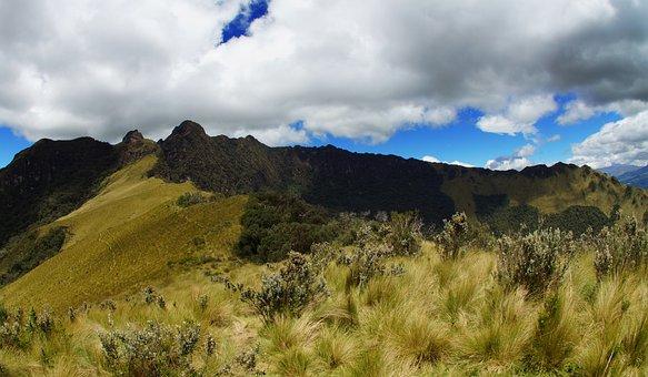 Ecuador, Andes, Pasochoa, America, South, Nature, Latin