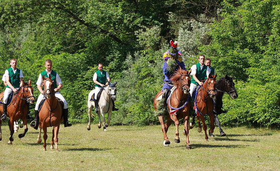 Locust Ride, Horse, Casel, Ride, Lower Lusatia