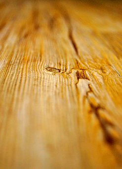 Wood, Ground, Plank, Nature, Background, Of Course