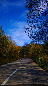 Autumn, Jesen, Auto, Road, Car, Nature, Clean, Colorful