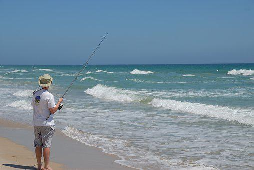 Surf Fisherman, Surf, Fishing, Person, Ocean, Water