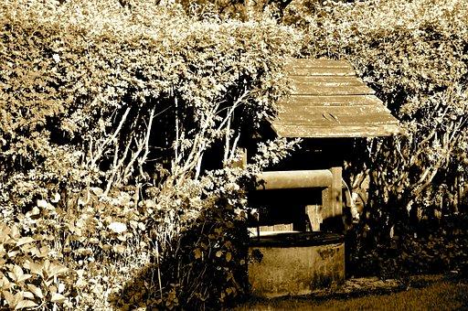 Masuria, Stacze, Poland, Well, Sepia, Garden